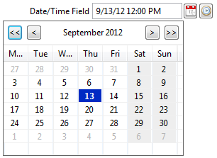 Scout 3.8 DateTimeField SWT.png