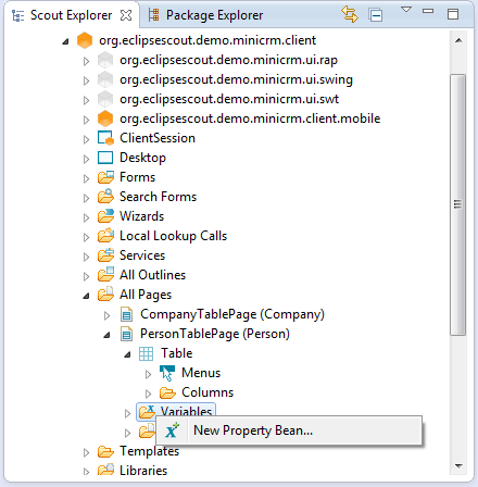Scout.3.9.minicrm.second page.new property bean.menu.png