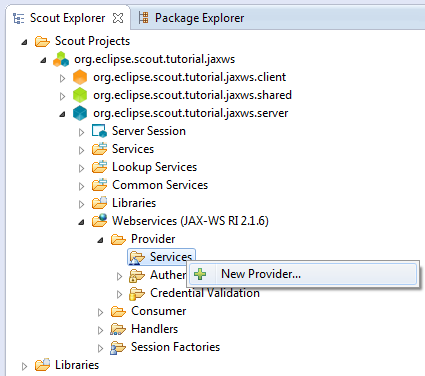 Create webservice provider