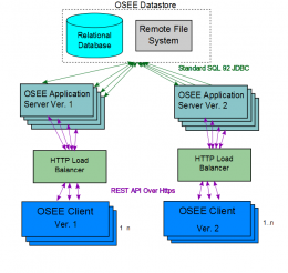 OSEE Network Diagram