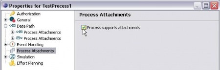 Stardust Process Instance Enable Process Attach