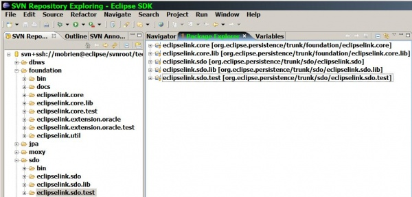 Eclipselink sdo java projects workspace ide cap.jpg