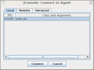 New connection dialog box in JConsole
